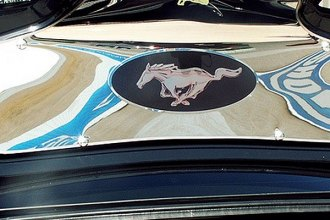 ACC® - Stainless Pony Emblem Trunk Panel