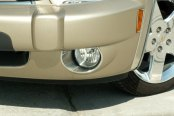ACC® - SS Fog Light Trim