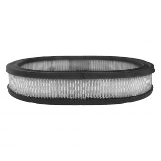 ACDelco® - Professional™ Oblong Air Filter