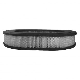 ACDelco® - Professional™ Oval Air Filter