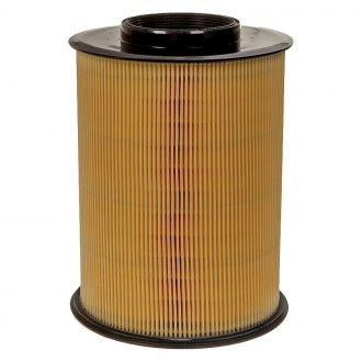 ACDelco® - Professional™ Cylinder Air Filter