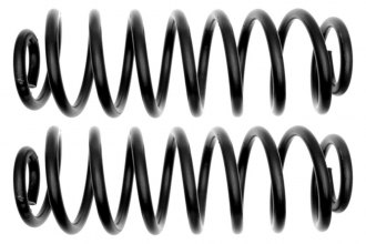 ACDelco® - Professional™ Rear Coil Spring Set