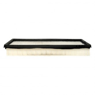 ACDelco® - Professional™ Panel Air Filter