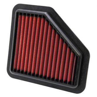 AEM® - DryFlow™ Unique Red Air Filter