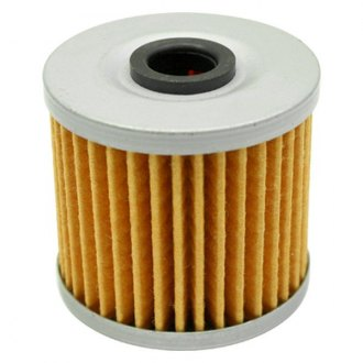 AEM® - High Volume Inline Replacement Fuel Filter Element