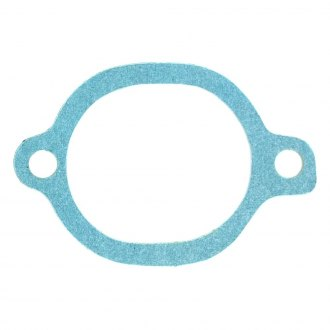 Apex Auto® - Engine Coolant Thermostat Seal
