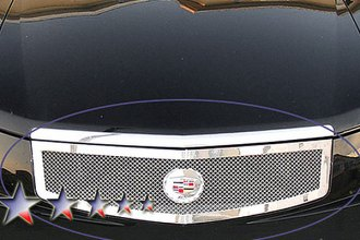 APG® A75368T - Chrome Mesh Main Grille