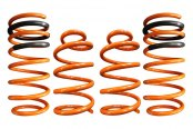 Image may not reflect your exact vehicle! ARK Performance® - GT-F Lowering Spring Kit