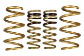 Image may not reflect your exact vehicle! ARK Performance® - GT-S Lowering Spring Kit