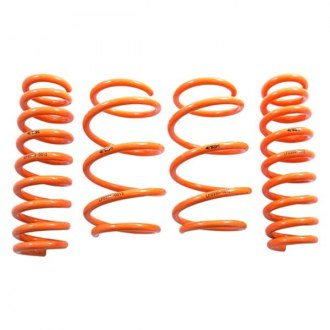 "ARK Performance® - 1"" x 1"" GT-F™ Front and Rear Lowering Coil Springs"