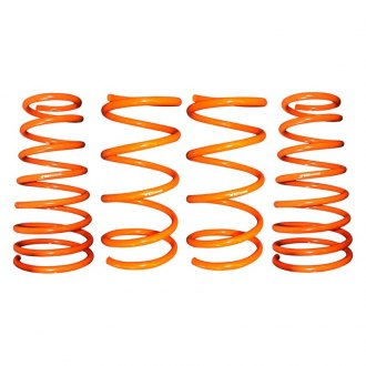 "ARK Performance® - 1.3"" x 1.3"" GT-F™ Front and Rear Lowering Coil Springs"