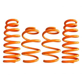 "ARK Performance® - 1.25"" x 1"" GT-F™ Front and Rear Lowering Coil Spring Kit"