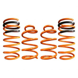 "ARK Performance® - 1.25"" x 1"" GT-F™ Front and Rear Lowering Coil Springs"