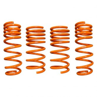 "ARK Performance® - 1"" x 1"" GT-F™ Front and Rear Lowering Coil Spring Kit"