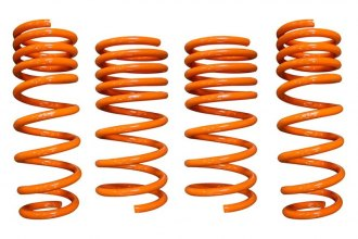 ARK Performance® - GT-F Lowering Spring Kit
