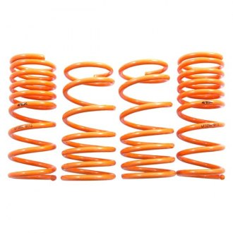 ARK Performance® - GT-F™ Front and Rear Lowering Coil Spring Kit