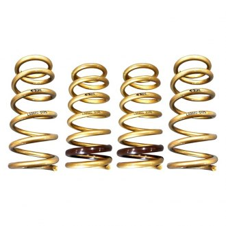 ARK Performance® - GT-S Lowering Spring Kit