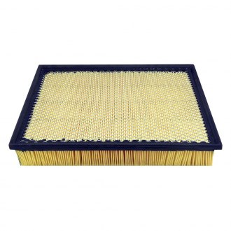 Baldwin Filters® - Panel Air Filter Element