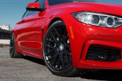 BEYERN® - SPARTAN Matte Black on BMW 4-Series