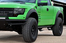 BLACK RHINO® - IMPERIAL Matte Black on Green Ford F-150