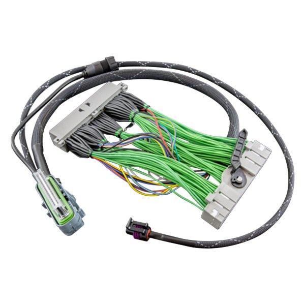 wiring harness hyundai genesis boomslang   hyundai genesis 2013 aem    plug and play harness  hyundai genesis 2013 aem    plug