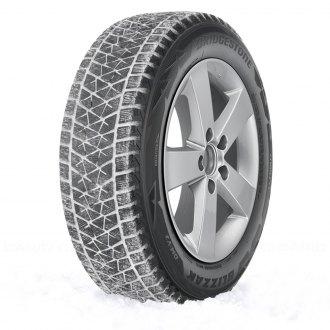 Bridgestone Blizzak Dm V