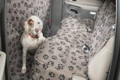 Image may not reflect your exact vehicle! Canine Covers® - Crypton™ Paw Print Custom Rear Champagne Seat Protector