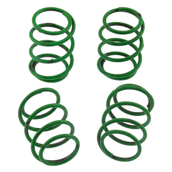 Carlson® - Rear Primary Drum Brake Hold Down Springs
