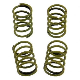 Carlson® - Rear Drum Brake Hold Down Spring Set