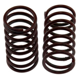 Carlson® - Rear Drum Brake Adjusting Lever Return Spring Set