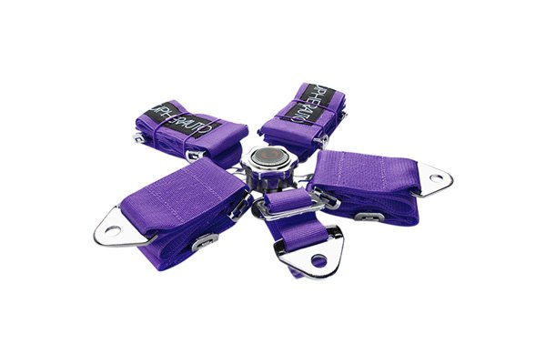 Cipher® - Purple 5-Point Quick Release Racing Harness