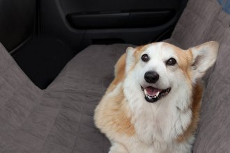Classic Accessories® - DogAbout™ Rear Seat Protector