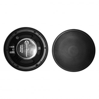 "Custom Autosound® - 6-1/2"" 2-Way 100 W Speakers"