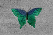 Dash Designs® - Butterfly Embroidered Logo