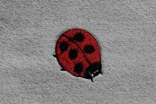Dash Designs® - Lady Bug Embroidered Logo