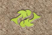 "DashMat® - Embroidery ""Pisces"" Light Green Logo"