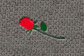 "DashMat® - Embroidery ""Red Rose"" Logo"