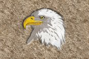 "DashMat® - Embroidery ""Eagle"" Logo"