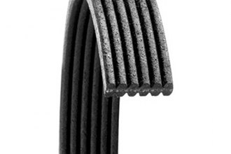 Dayco® 6071161 - Poly Rib™ Dual Sided Serpentine Belt (Main Drive)