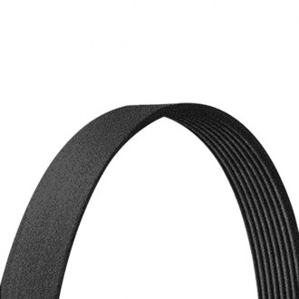 Dayco® - Drive Rite™ V-Ribbed Serpentine Belt