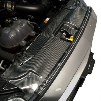 DefenderWorx® - Carbon Fiber Radiator Cover