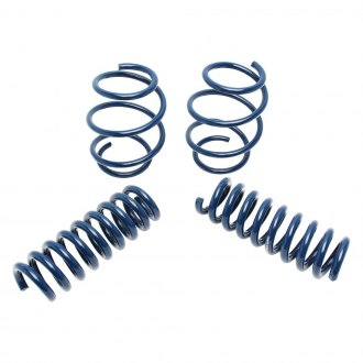 "Dinan® - 1"" x 1.125"" Front and Rear Lowering Coil Springs"