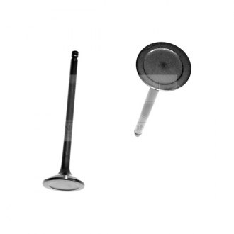 DNJ Engine Components® - Exhaust Valve