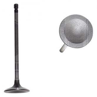 DNJ Engine Components® - Intake Valve