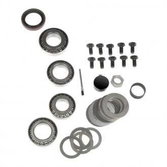 Dorman® - Rear Differential Bearing Kit with Marking Compound
