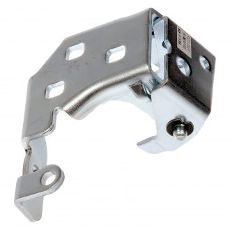 Dorman® - Rear Passenger Side Lower Door Hinge Assembly