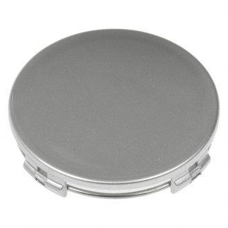 Dorman® - Silver Wheel Center Cap