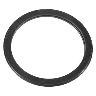 DPH® - Engine Coolant Thermostat O-Ring