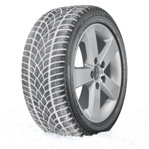 DUNLOP® - SP WINTER SPORT 3D In Snow