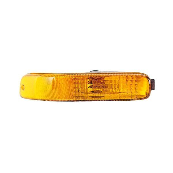 Eagle® - Passenger Side Replacement Turn Signal/Parking Light